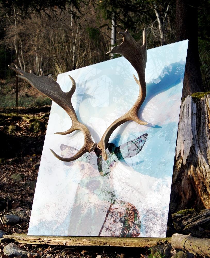 Kunst Vorarlberg Hirschbild Modern